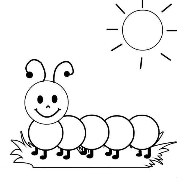 - How To Color A Caterpillar Sunbathing In The Sunshine Coloring Page :  TOODSY COLOR